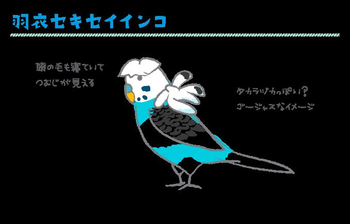 羽衣インコ